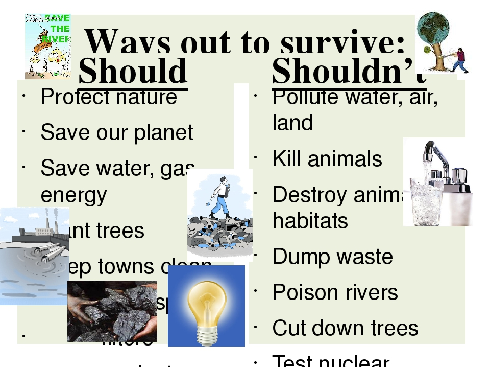 ways to conserve nature