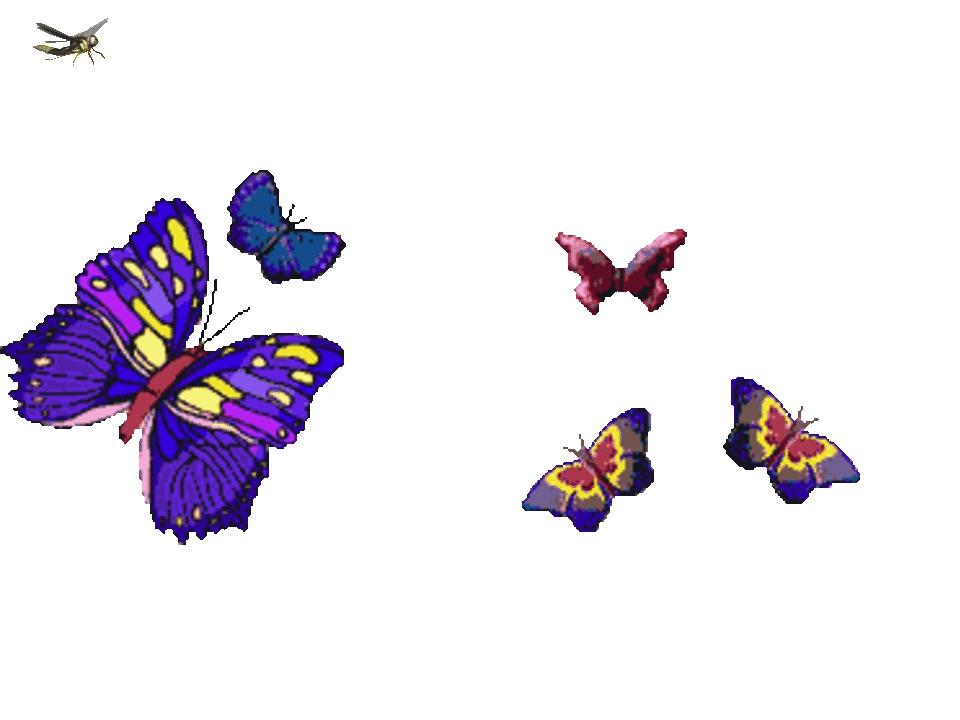 Юбилей лет, картинки анимация летающие живые бабочки