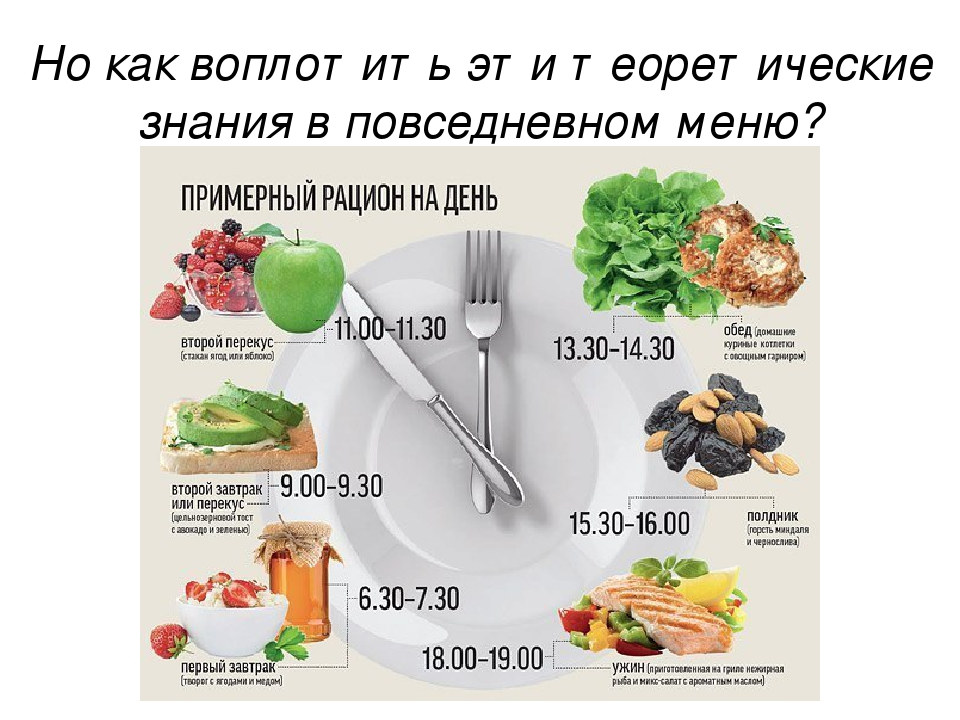 Рацион правильного питания по часам