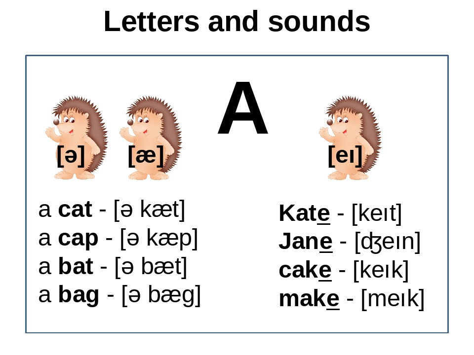 Letters and sounds A a cat - [ǝ kæt] a cap - [ǝ kæp] a bat - [ǝ bæt] a bag -...