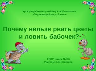 ГБОУ школа №570 Учитель: Е.В. Новикова Почему нельзя рвать цветы и ловить баб