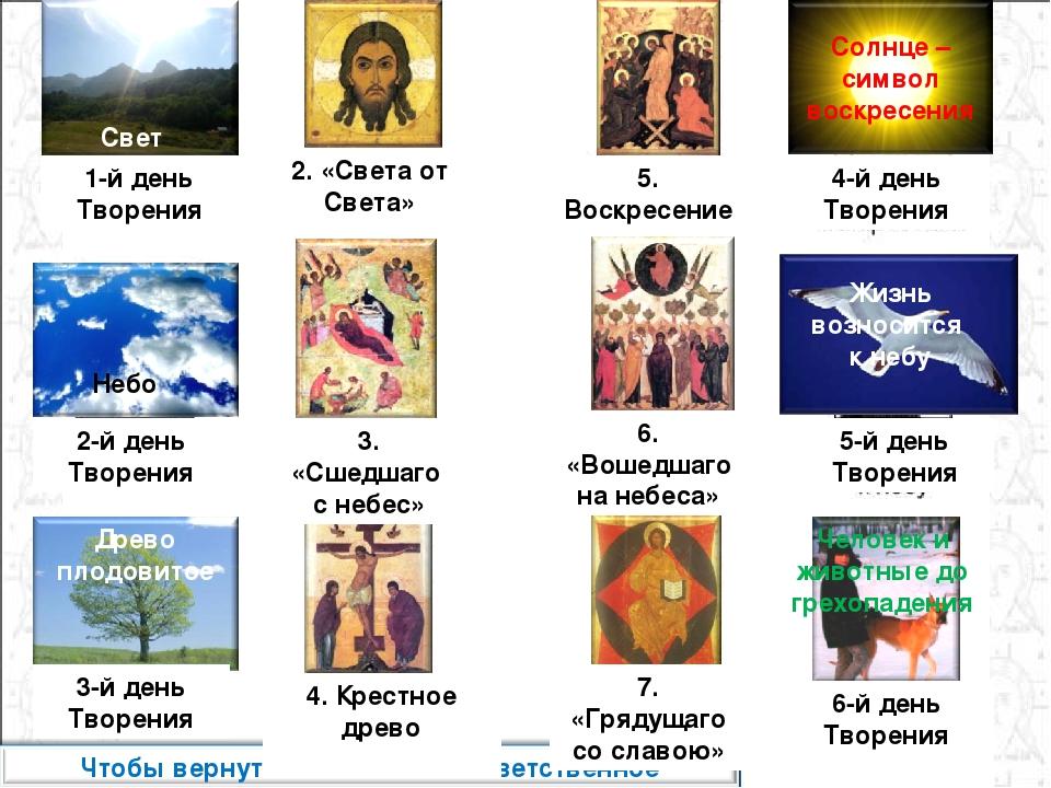Небо 1-й день Творения 2-й день Творения 3-й день Творения Древо плодовитое С...