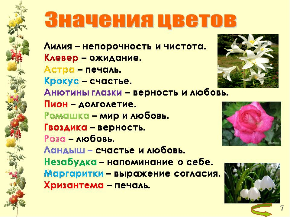 Значения цветов в картинках