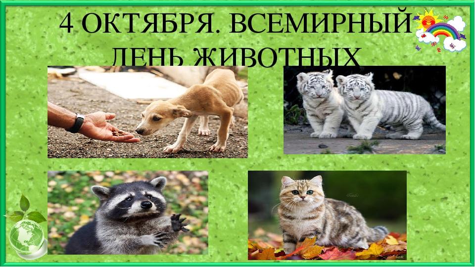 картинки день защиты животных 4 октября первый