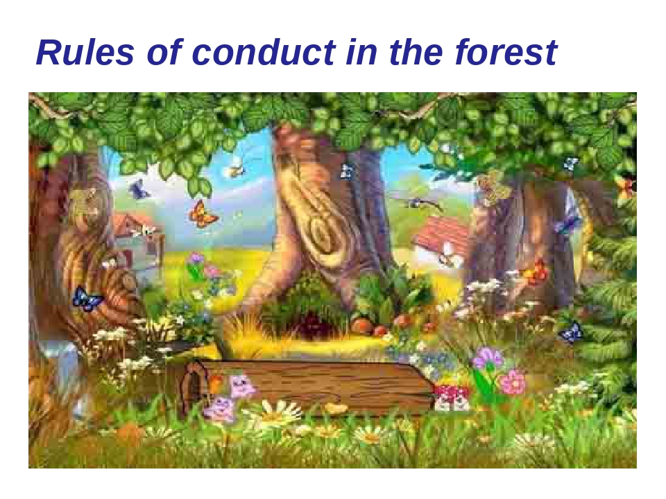 Rules of conduct in the forest