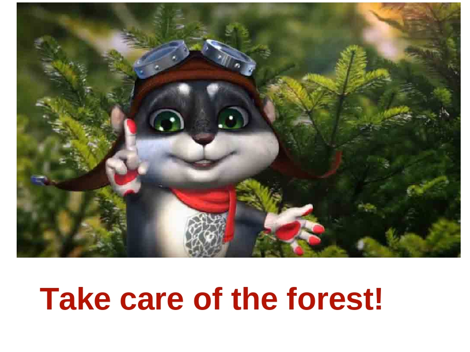 Take care of the forest!