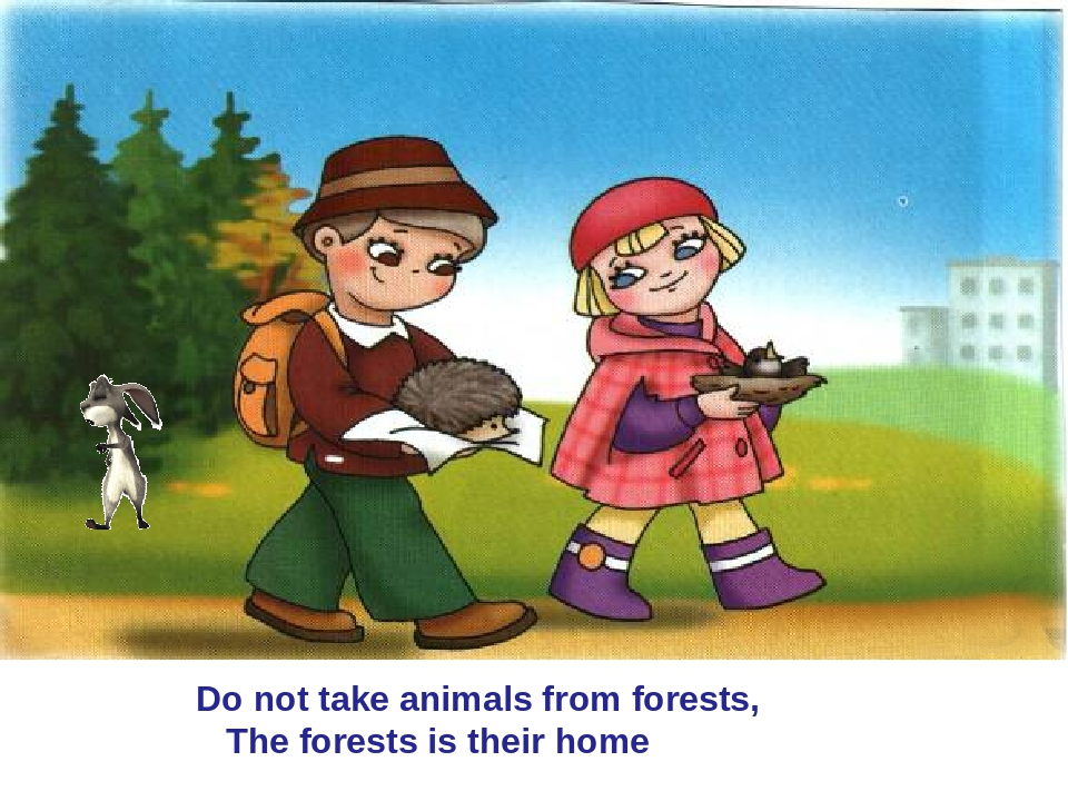 Do not take animals from forests, The forests is their home                 ...