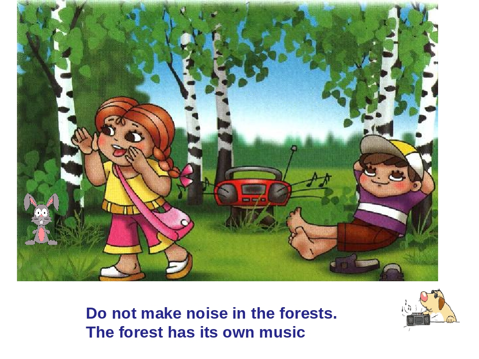 Do not make noise in the forests. The forest has its own music