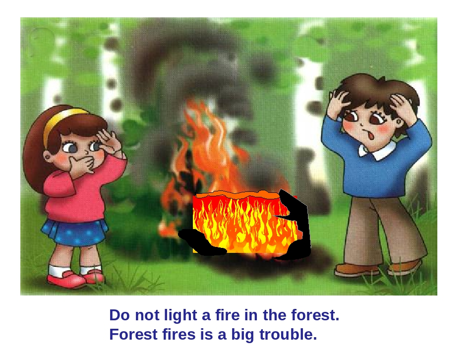 Do not light a fire in the forest. Forest fires is a big trouble.