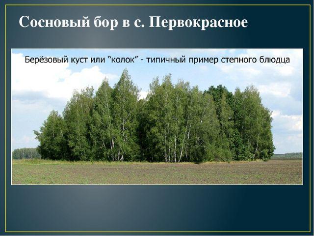 Памятники природы оренбургской области фото с описанием памятники новокузнецк цены ижевск