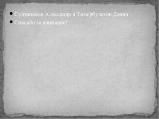 Султанянов Александр и Тимербулатов Данил Спасибо за внимание!