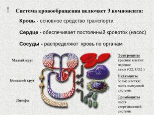 ! Система кровообращения включает 3 компонента: Кровь - основное средство тра