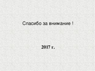 Спасибо за внимание ! 2017 г.