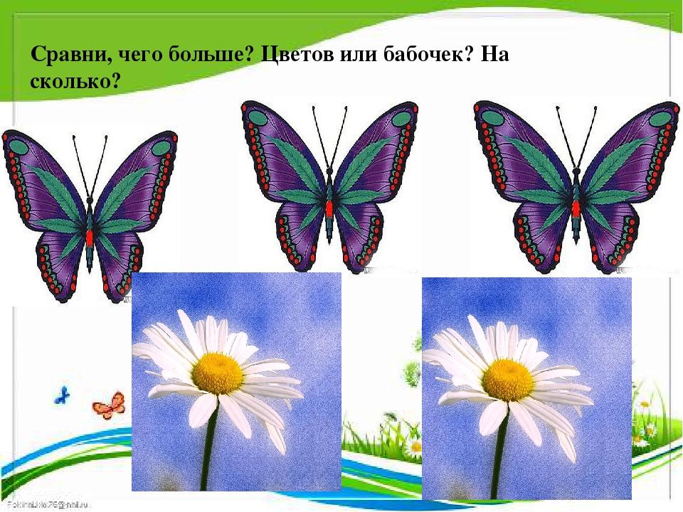 Сравни, чего больше? Цветов или бабочек? На сколько?