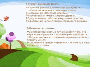4. Основное содержание проекта Изучение флоры Калининградской области –