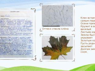 Оттиск ствола клёна Клен встречает самым первым Осени приход. Кружит в воздух