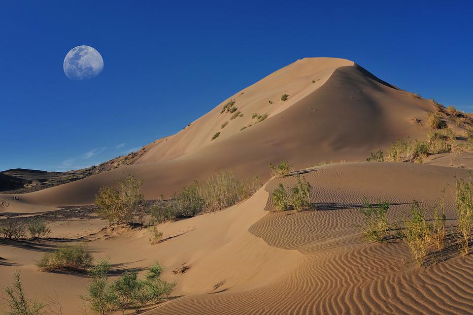 операции казахстан пустыня картинки могут