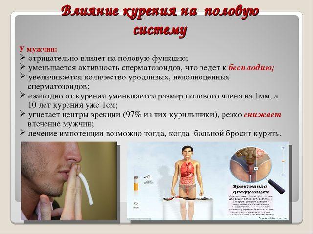 Действие курения на член