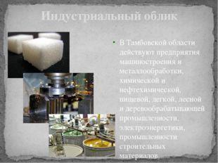 Индустриальный облик В Тамбовской области действуют предприятия машиностроени