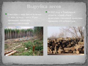 Вырубка лесов Ежегодно с лица Земли исчезает 11 млн. га леса – это в 10 раз п