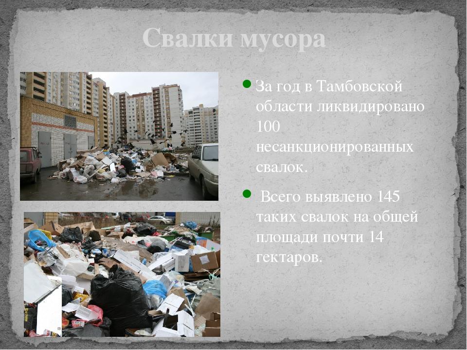 Свалки мусора За год в Тамбовской области ликвидировано 100 несанкционированн...