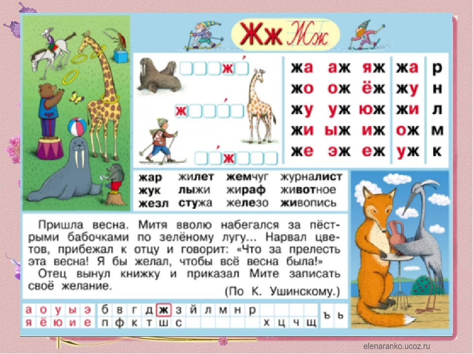 русском буквой на языке ж с знакомство