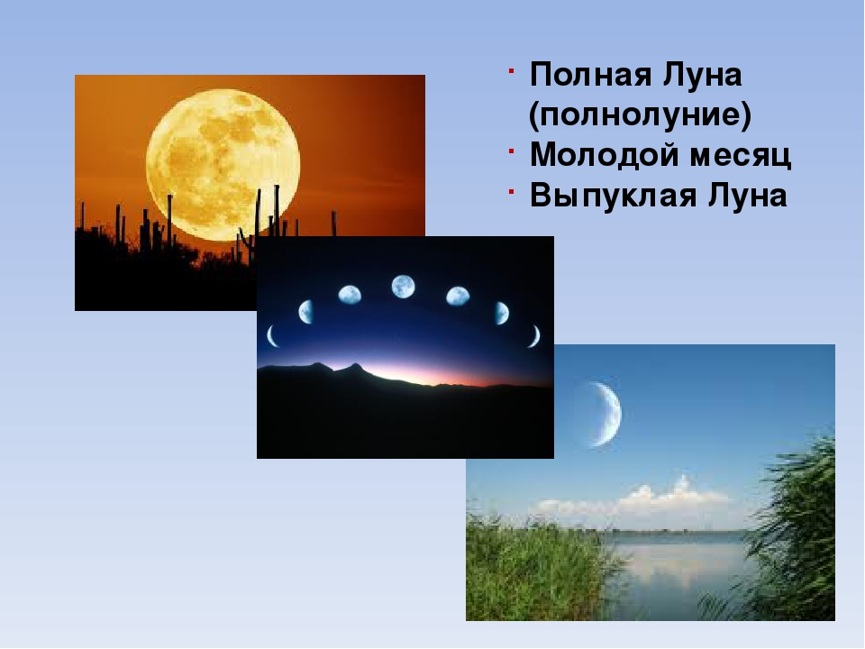 Какой представляли люди себе Землю в давние времена?