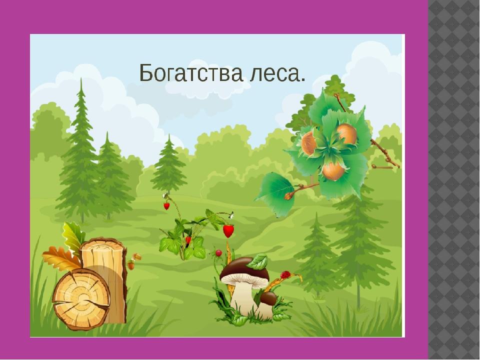 Картинка лес наше богатство для детей