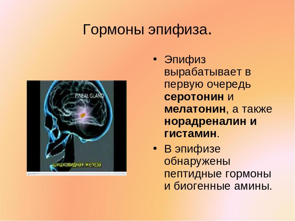 Гормоны эпифиза. Эпифиз вырабатывает в первую очередь серотонин и мелатонин,...