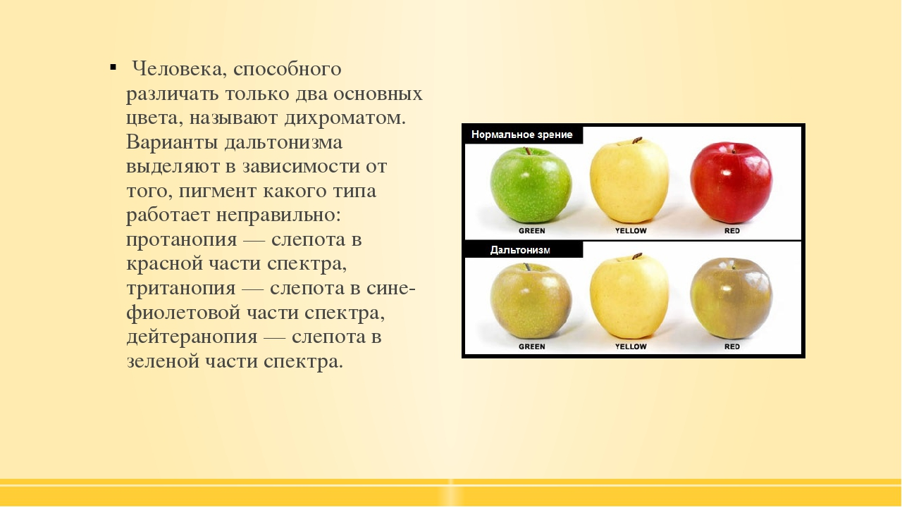 Человека, способного различать только два основных цвета, называют дихромато...