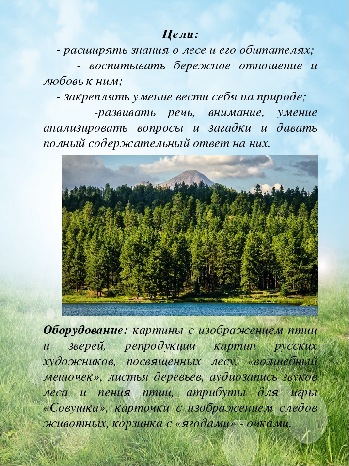 картинки о лесе и его обитателях