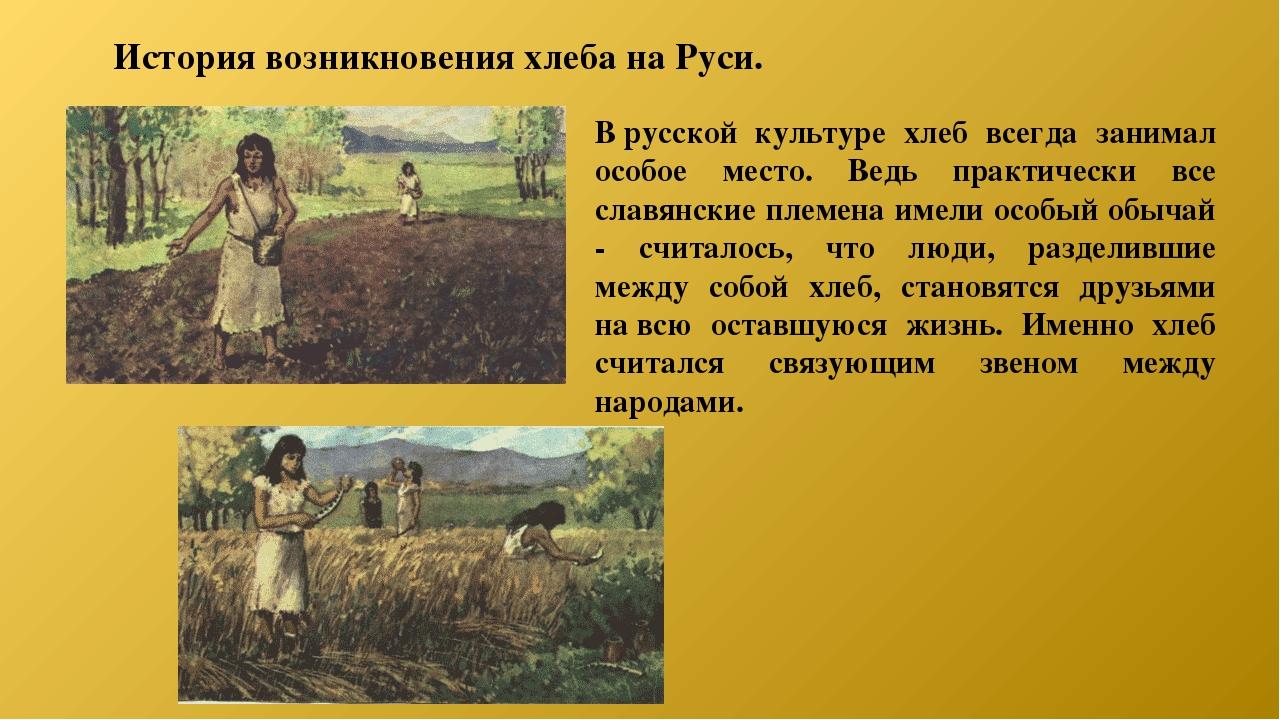 картинки история возникновения хлеба проста исполнении