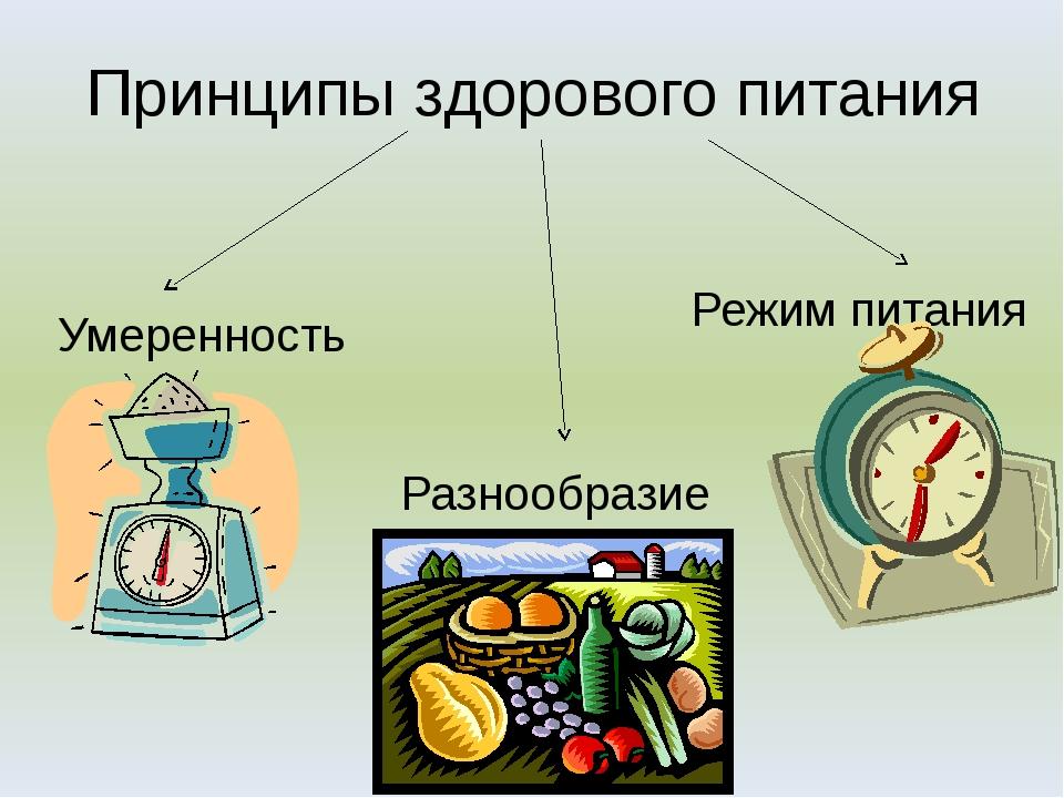 Гигиенические основы рационального питания