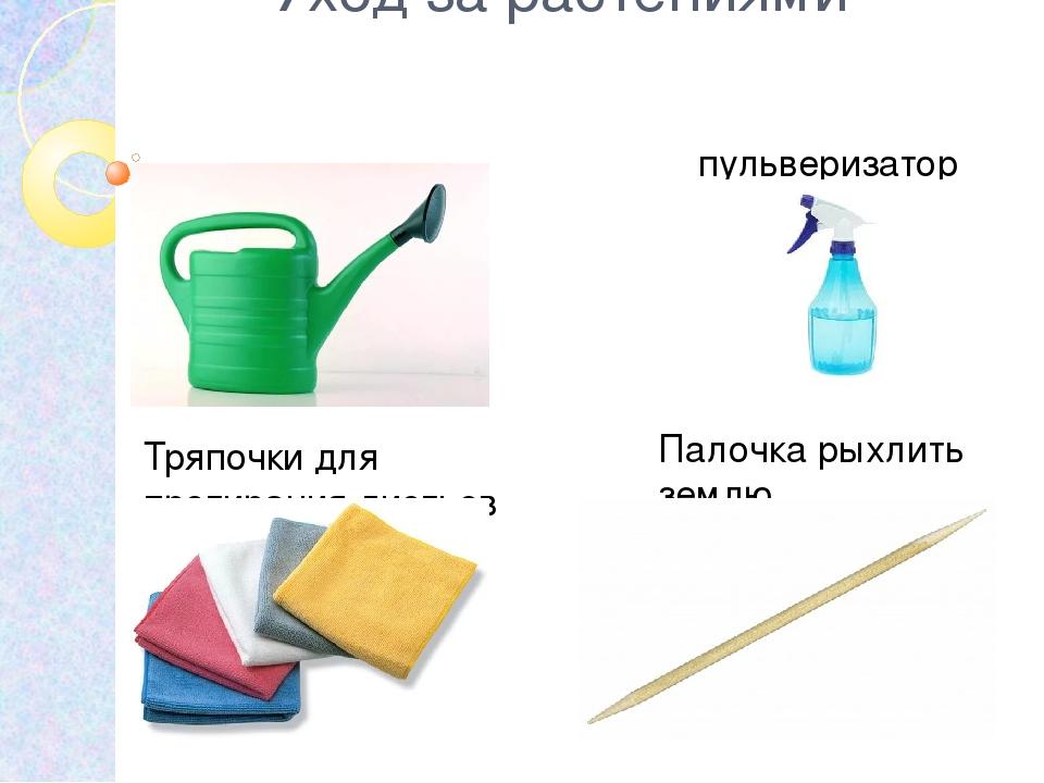 Предметы для ухода за комнатными растениями рисунки