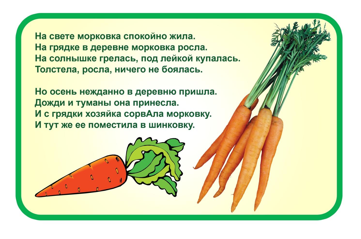 Стих морковь ебать