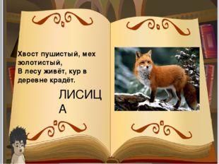 Хвост пушистый, мех золотистый, В лесу живёт, кур в деревне крадёт. ЛИСИЦА