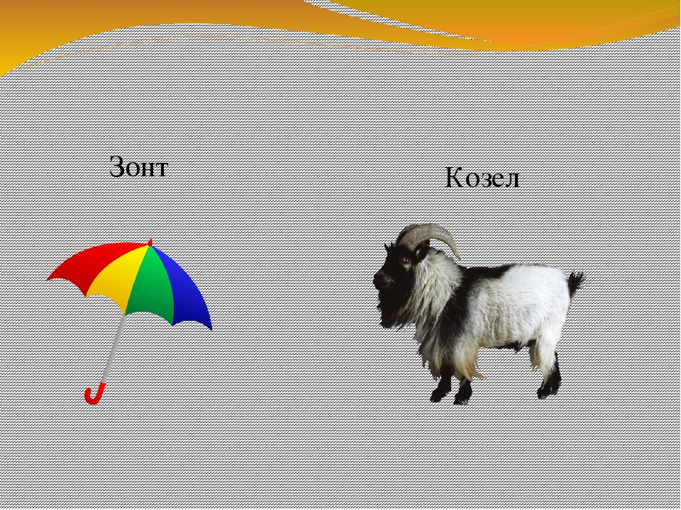 Зонт Козел