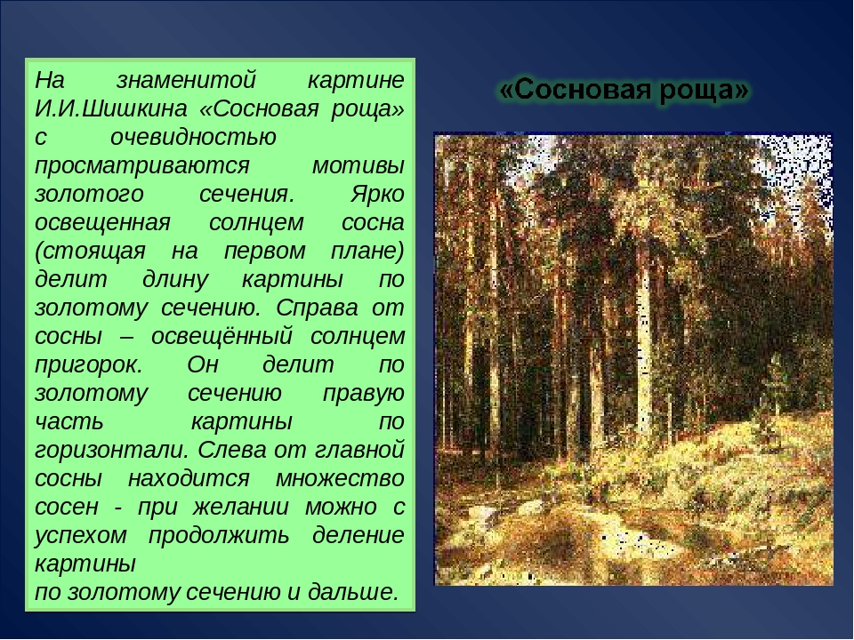 На знаменитой картине И.И.Шишкина «Сосновая роща» с очевидностью просматриваю...