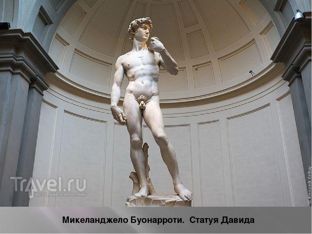Микеланджело Буонарроти. Статуя Давида