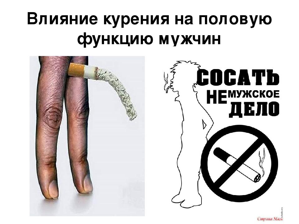 Влияют ли сигареты и алкоголь на сексуальную активность мужчин
