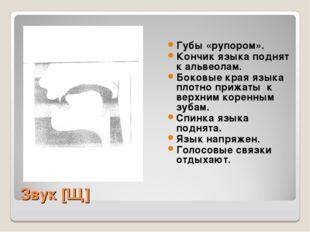 Звук [Щ] Губы «рупором». Кончик языка поднят к альвеолам. Боковые края языка