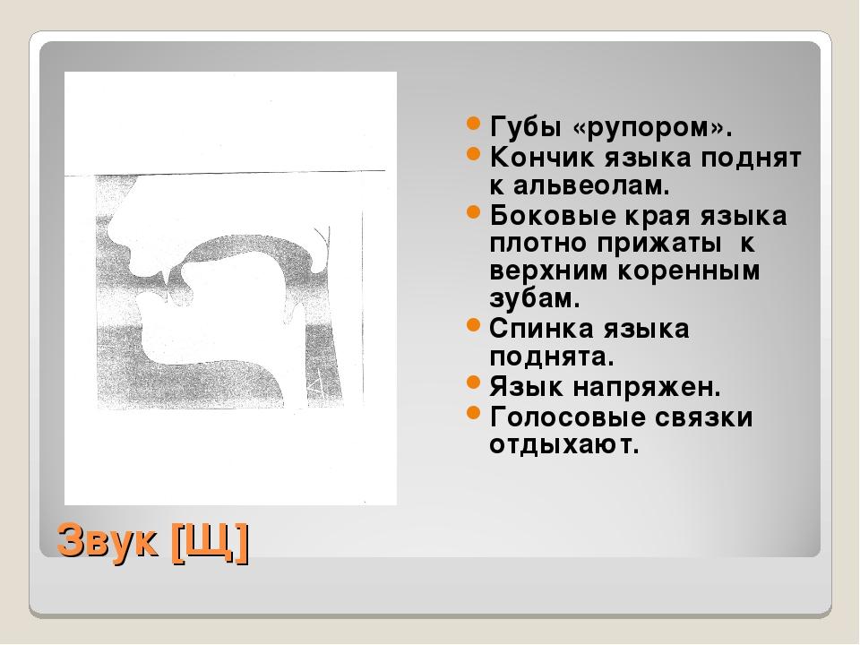 Звук [Щ] Губы «рупором». Кончик языка поднят к альвеолам. Боковые края языка...