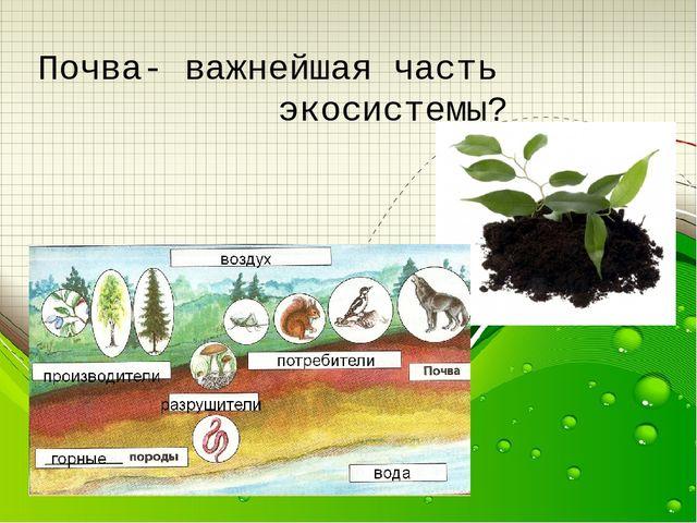 Почва важнейшая часть экосистемы 3 класс презентация