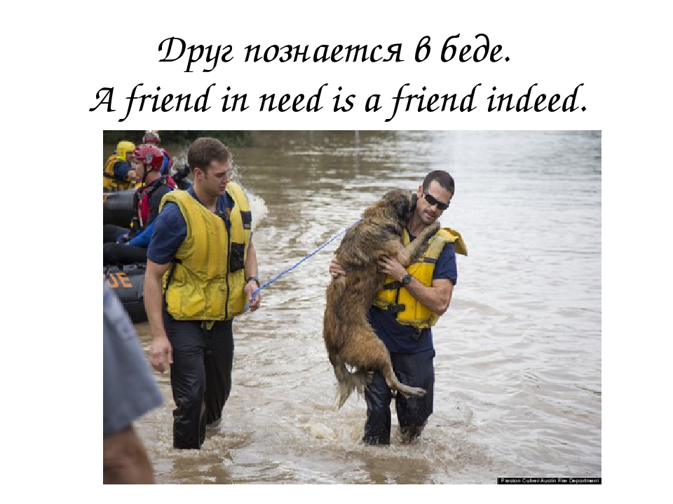 a friend in need is afriend in deed A friend in need is a friend indeed definition is - —used to say that a friend who will help someone when help is needed is a true friend —used to say that a friend who will help someone when help is needed is a true friend.