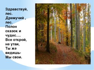 Здравствуй, лес. Дремучий , лес. Полон сказок и чудес…. Все открой, не утаи,
