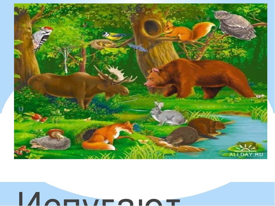 Испугаются зверюшки Убегут лесной опушки.