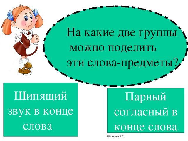 Урок русского языка во 2 классе слова-названия предметов мужского и женского рода на шипящую пнш