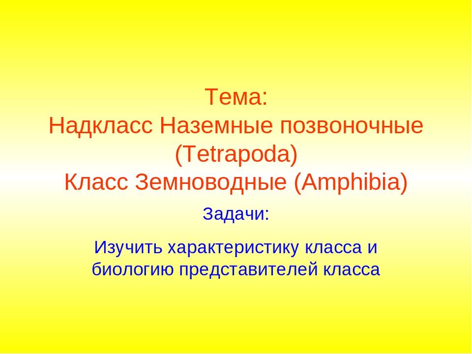 Тема: Надкласс Наземные позвоночные (Tetrapoda) Класс Земноводные (Amphibia)...