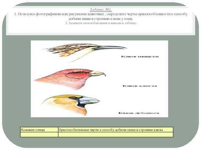 лабораторная работа по биологии 9 класс приспособленность организмов к среде обитания