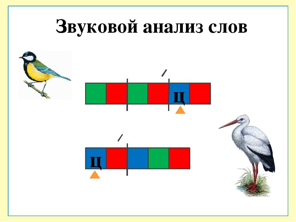 Модели слов картинки